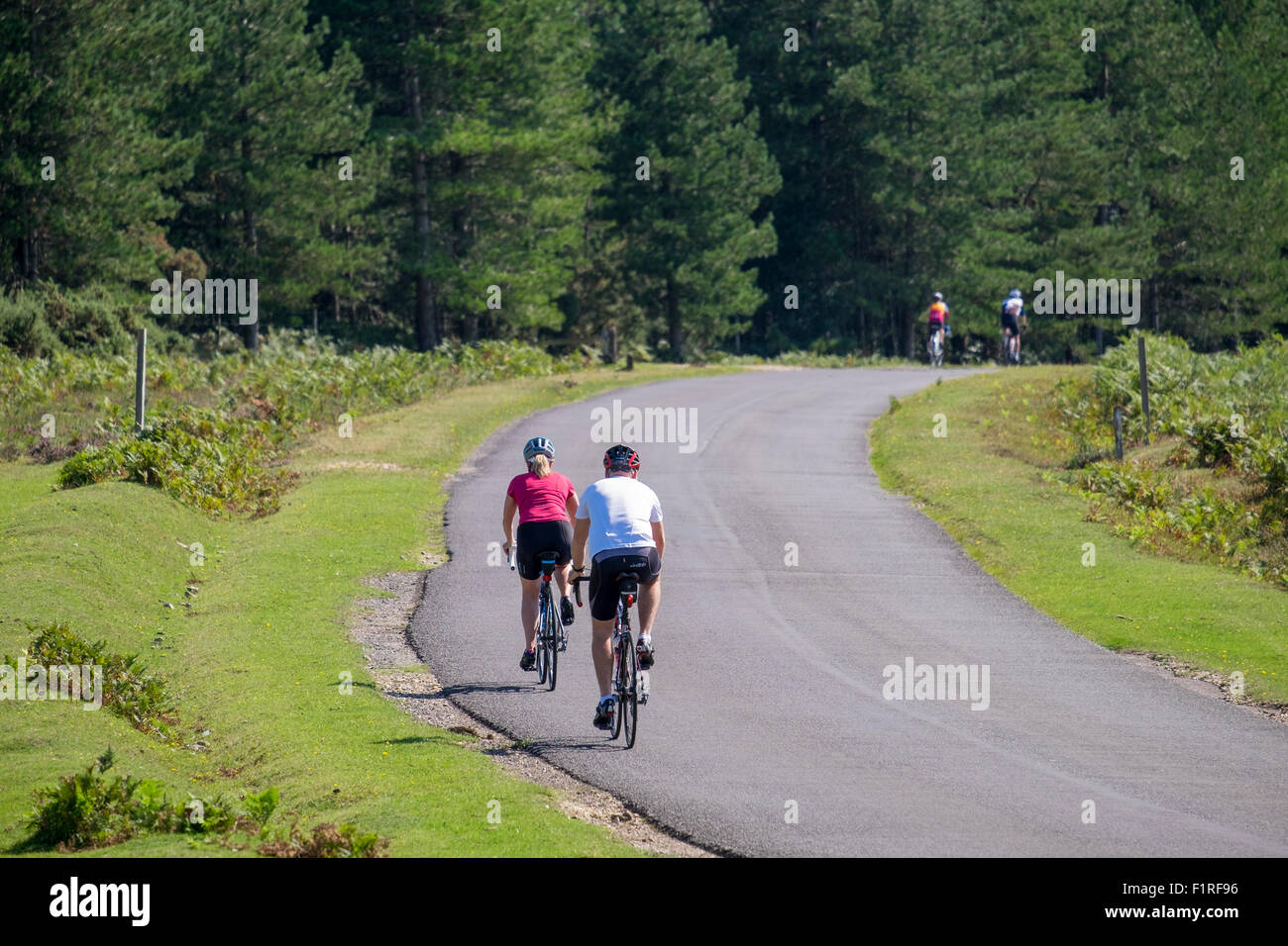 male and female cyclists riding on the quiet almost deserted roads in the New forest hampshire UK - Stock Image