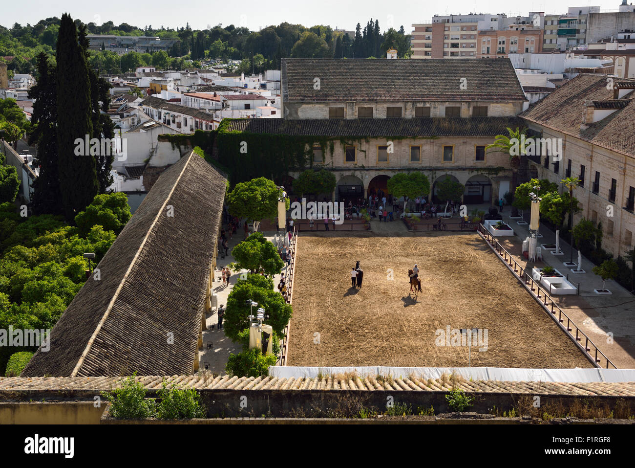 View of the Royal Stables of the Permanent Andalusian horse Equestrian show Cordoba Spain - Stock Image