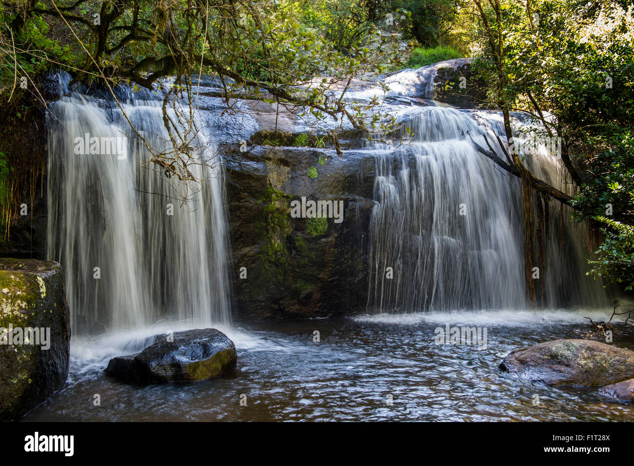 Williams Falls on the Zomba Plateau, Malawi, Africa - Stock Image