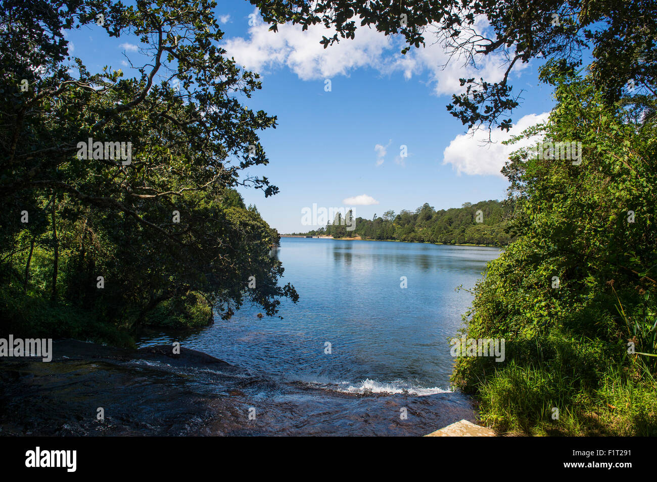 Mandala falls flowing in the artificial lake on the Mulunguzi Dam, Zomba Plateau, Malawi, Africa - Stock Image