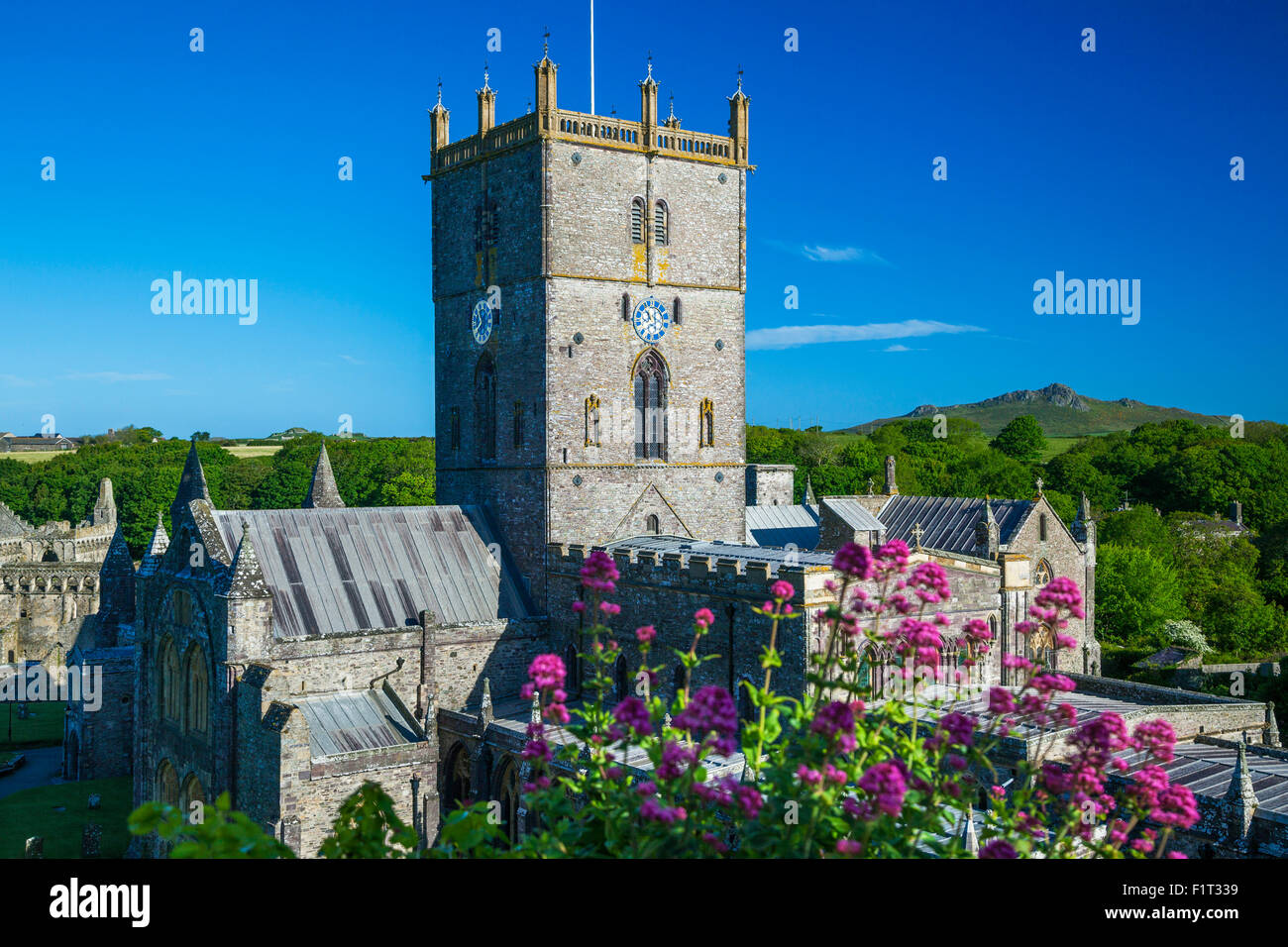 St. Davids Cathedral, Pembrokeshire, Wales, United Kingdom, Europe - Stock Image