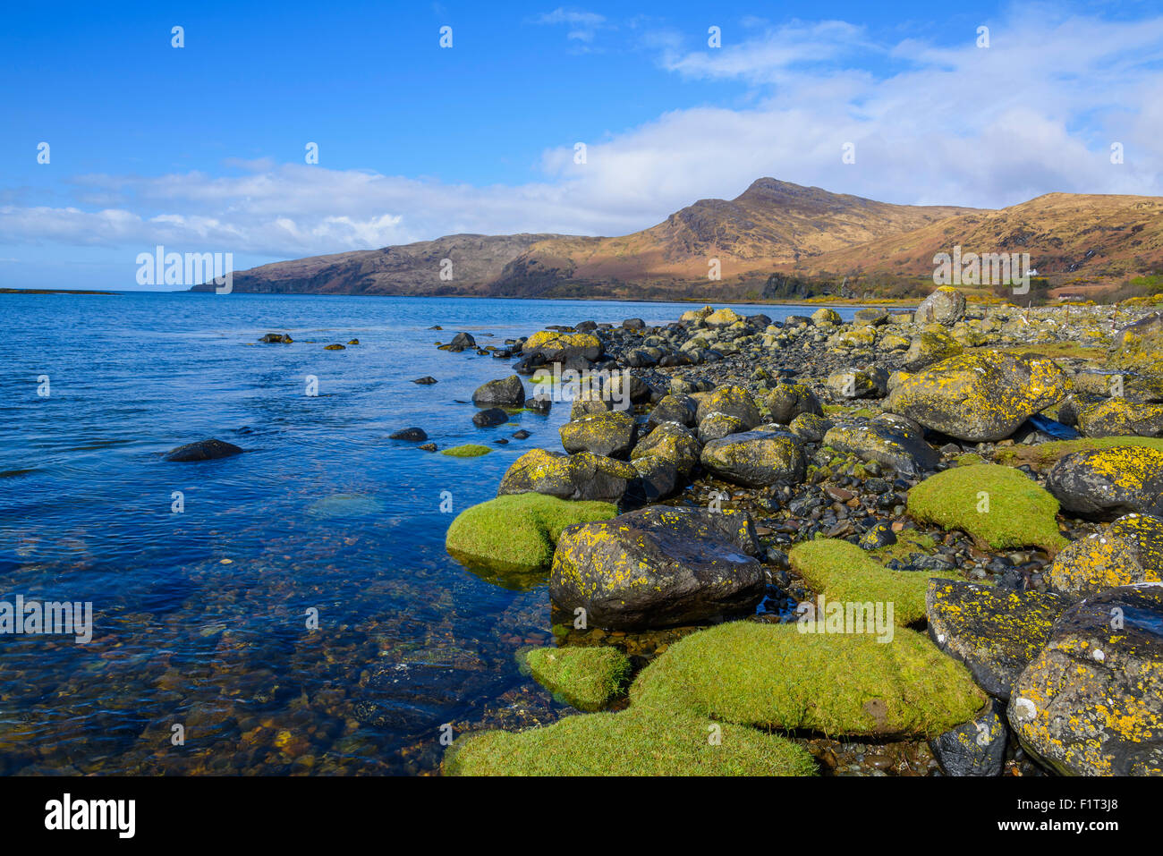 Loch Buie, Isle of Mull, Inner Hebrides, Argyll and Bute, Scotland, United Kingdom, Europe - Stock Image