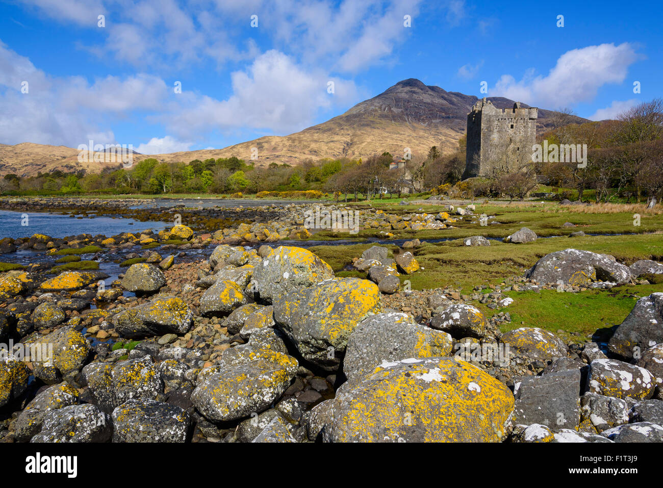 Moy Castle, Lochbuie, Isle of Mull, Inner Hebrides, Argyll and Bute, Scotland, United Kingdom, Europe - Stock Image