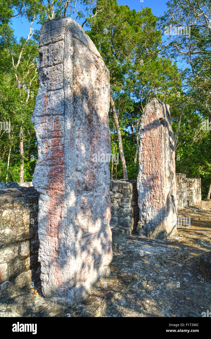 Stela 24 on right, and Stela 23 on left, on top of Structure VI, Calakmul Mayan Archaeological Site, UNESCO, Campeche, - Stock Image