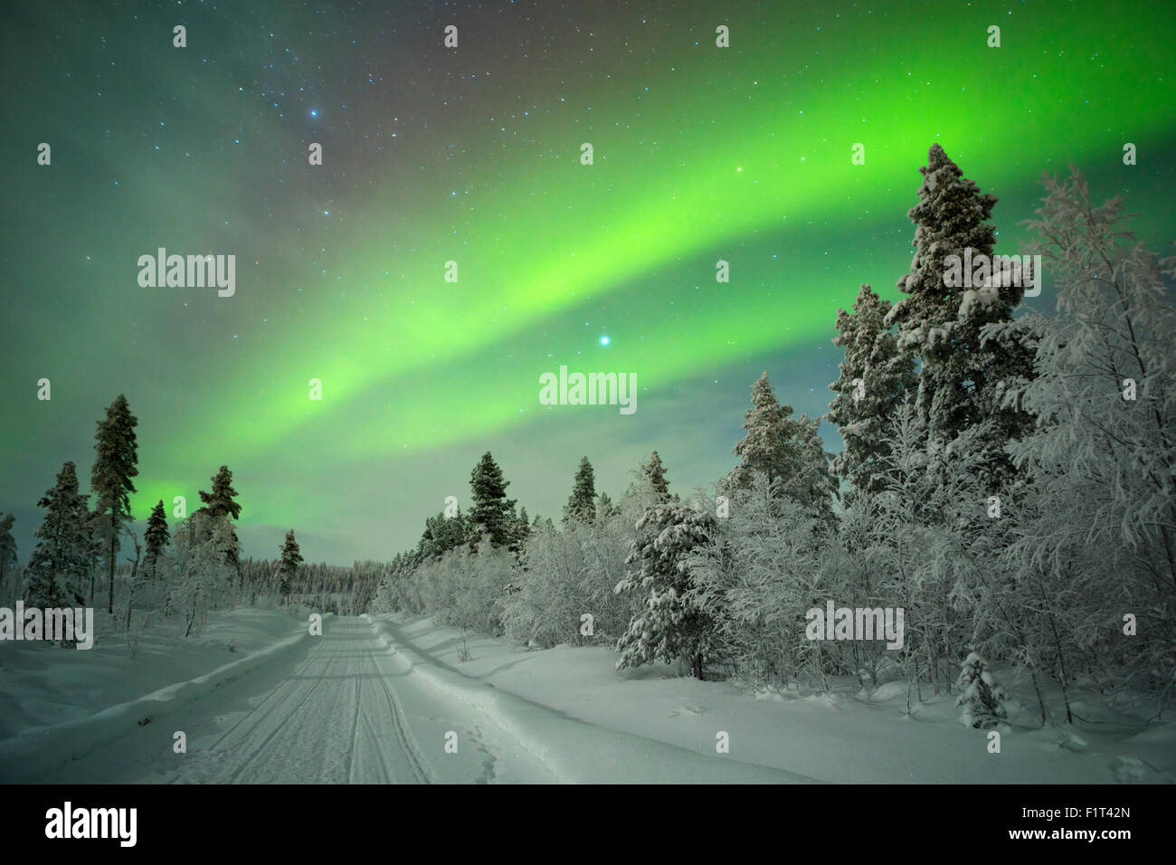 Spectacular aurora borealis (northern lights) over a track through winter landscape in Finnish Lapland. - Stock Image