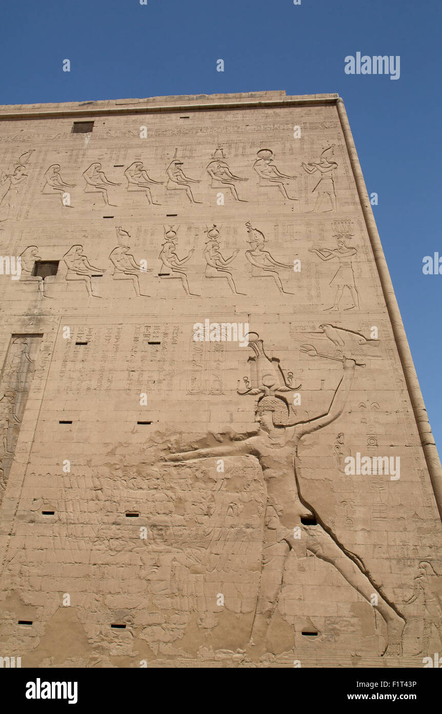 Relief depicting the Pharaoh slaying enemies, Pylon, Temple of Horus, Edfu, Egypt, North Africa, Africa - Stock Image