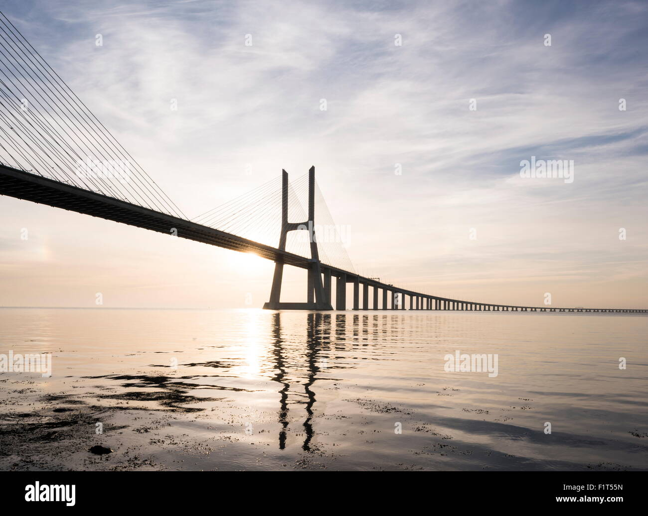 Vasco da Gama Bridge over Rio Tejo (Tagus River) at dawn, Lisbon, Portugal, Europe - Stock Image