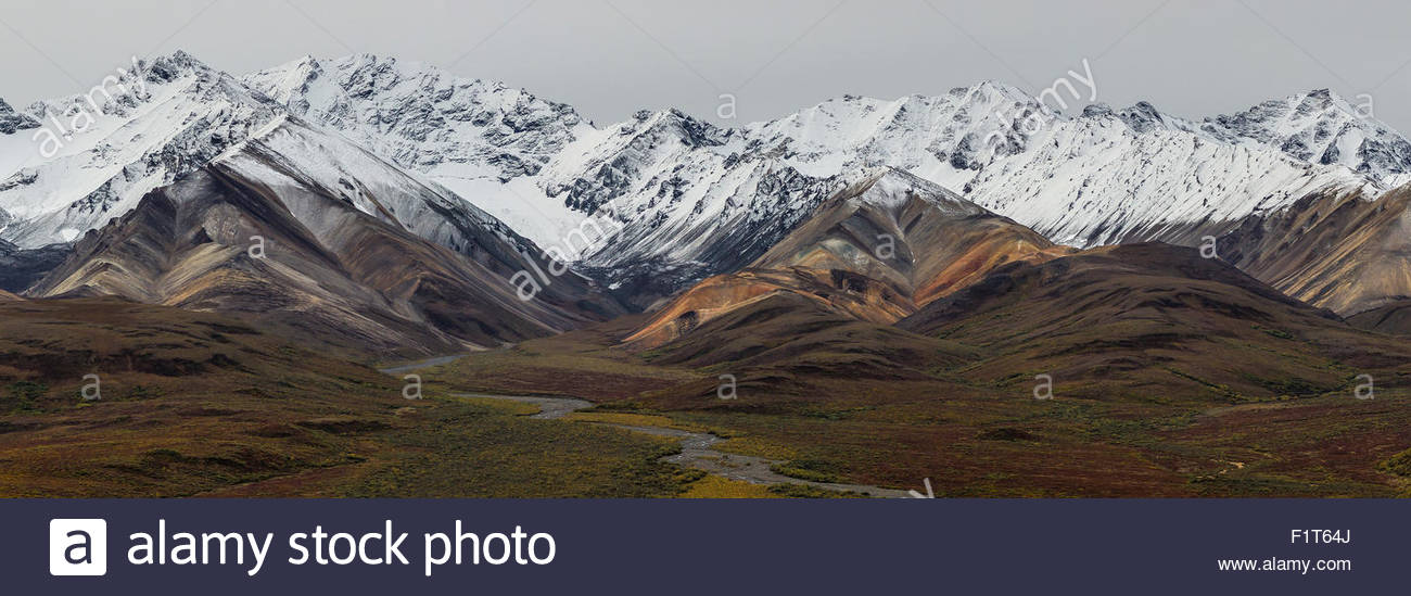 Polychrome Pass in Denali national park - Alaska - Stock Image