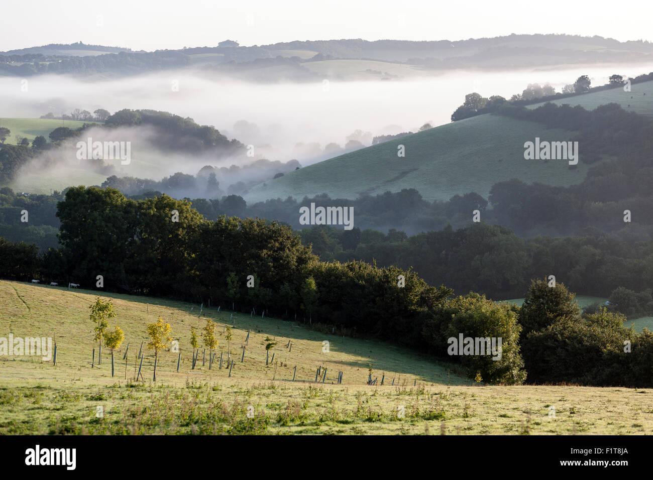 early morning mist rising over the Teign Valley,Devon,Doddiscombsleigh Village of Doddiscombsleigh Haldon,autumn, - Stock Image