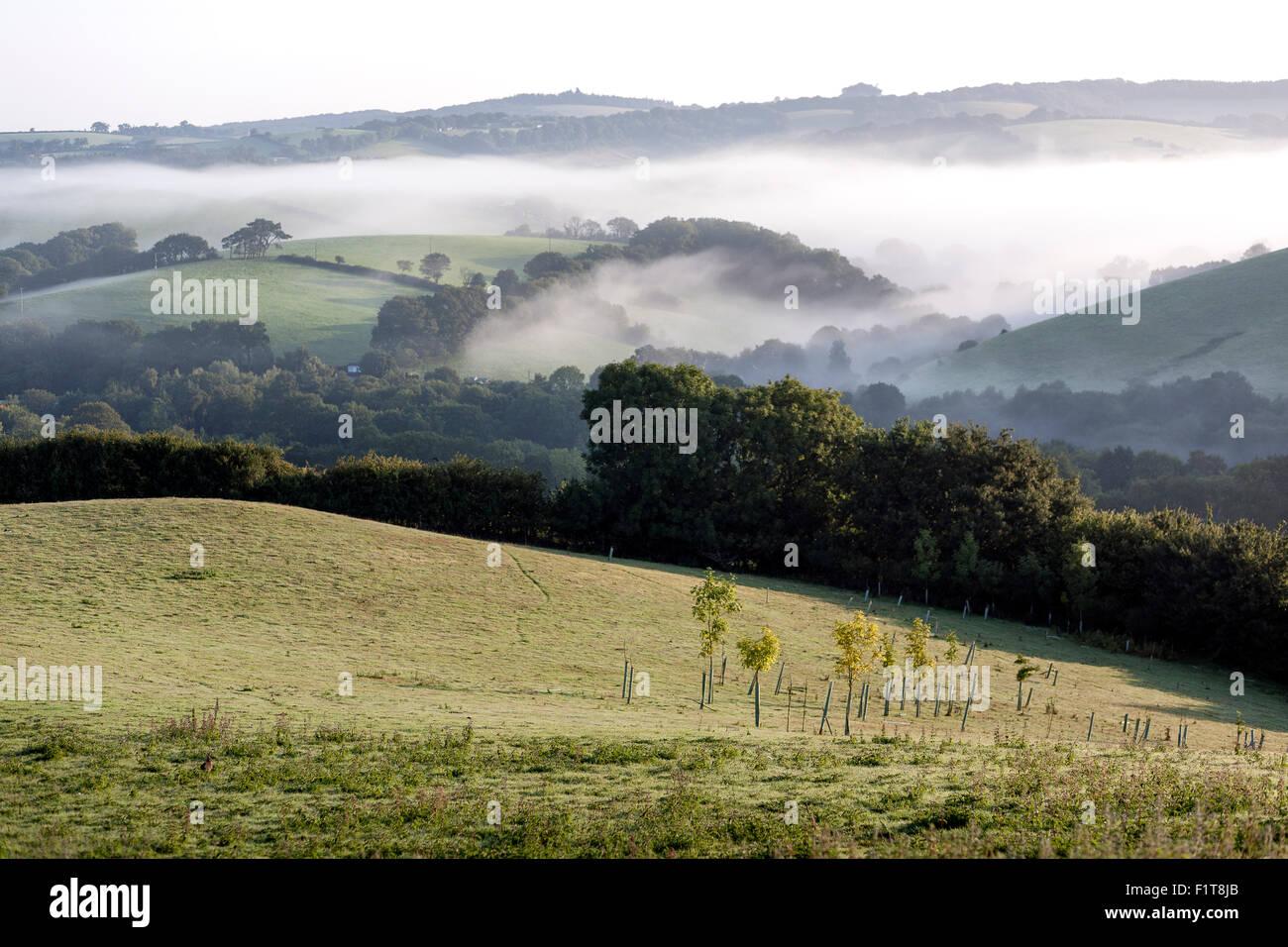 early morning mist rising over the Teign Valley,Devon,Doddiscombsleigh Village of DoddiscombsleighHaldon,autumn, - Stock Image