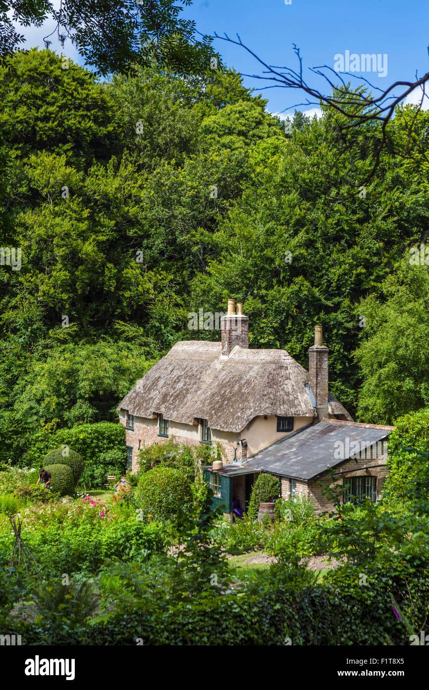 Hardy's Cottage, birthplace of writer Thomas Hardy, Thorncombe Wood, Higher Bockhampton, near Dorchester, Dorset, - Stock Image
