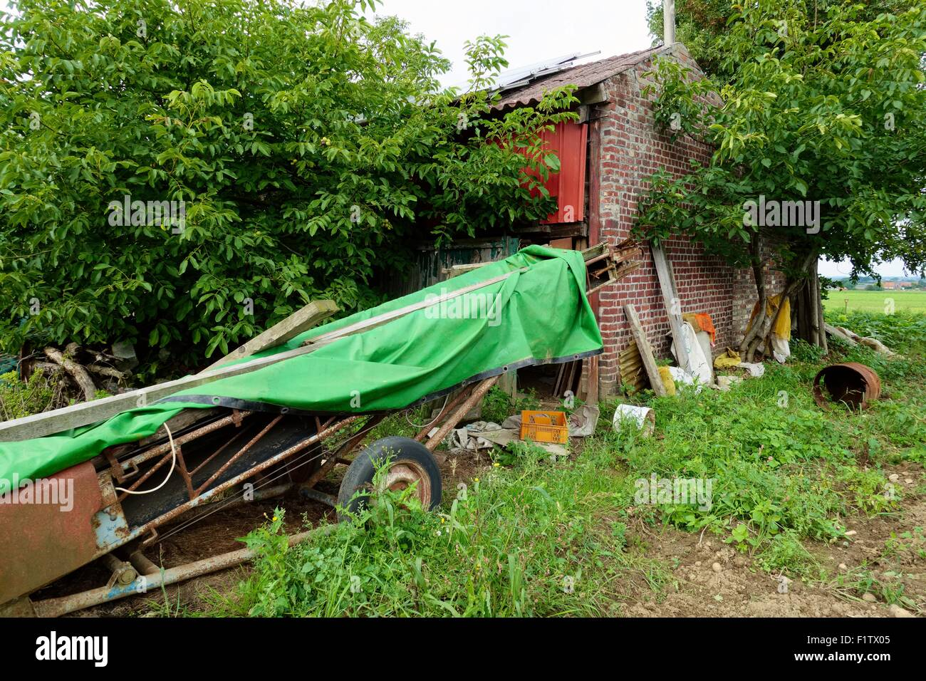 Old shed with skip - Stock Image