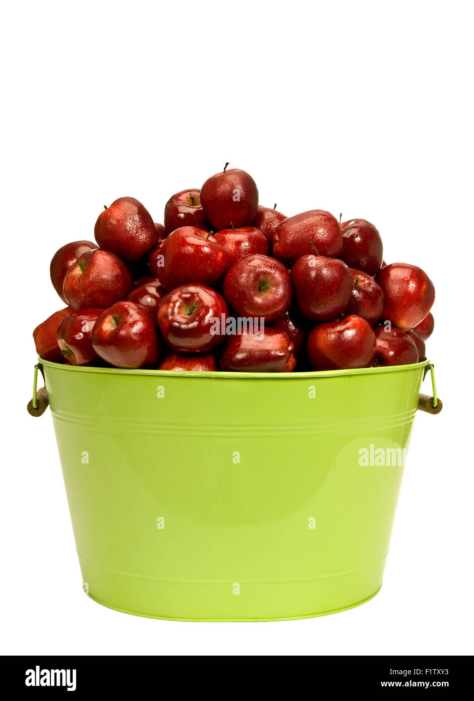 Glistening Dew Covered Red Delicious Apples Piled High In Large Bucket Isolated on White Background - Stock Image