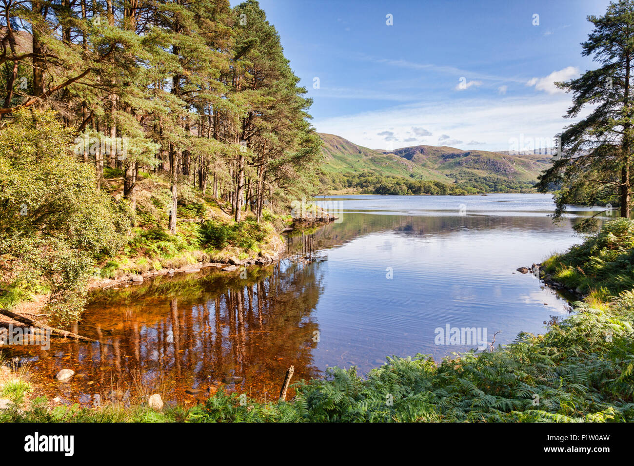 Loch Trool and the Galloway Hills, Dumfries and Galloway, Scotland. - Stock Image