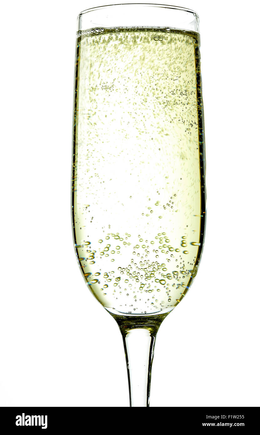 Isolated champagne flute on white background - Stock Image