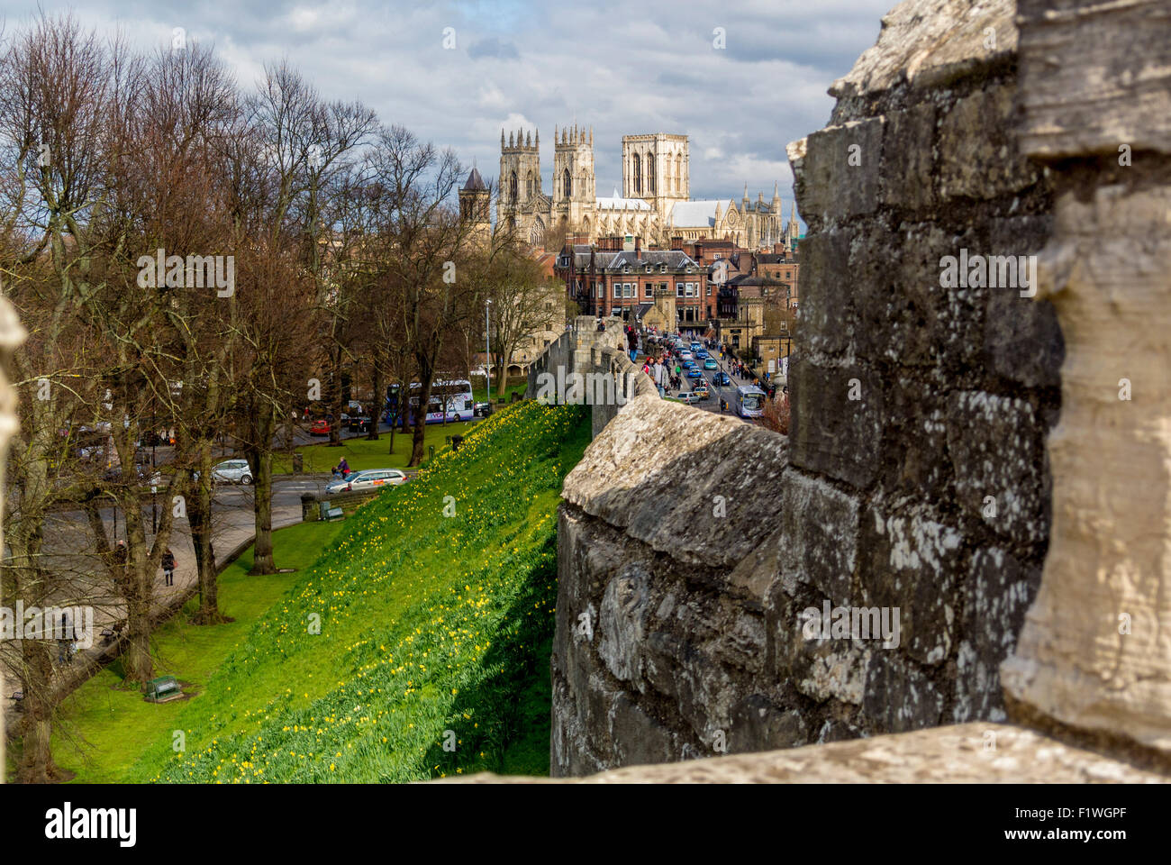 Bar Walls and York Minster - Stock Image