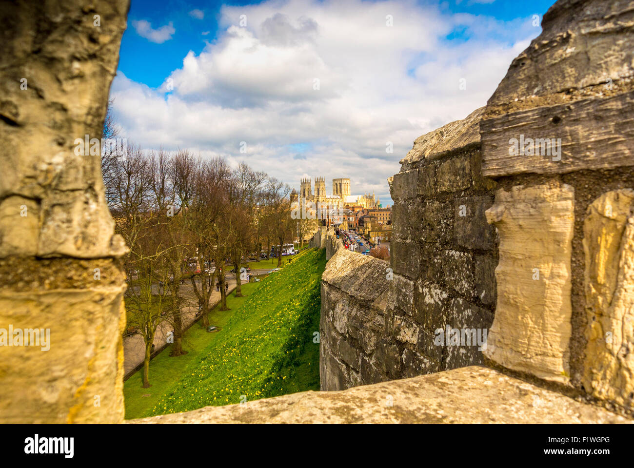 Bar Walls and York Minster - Stock Image