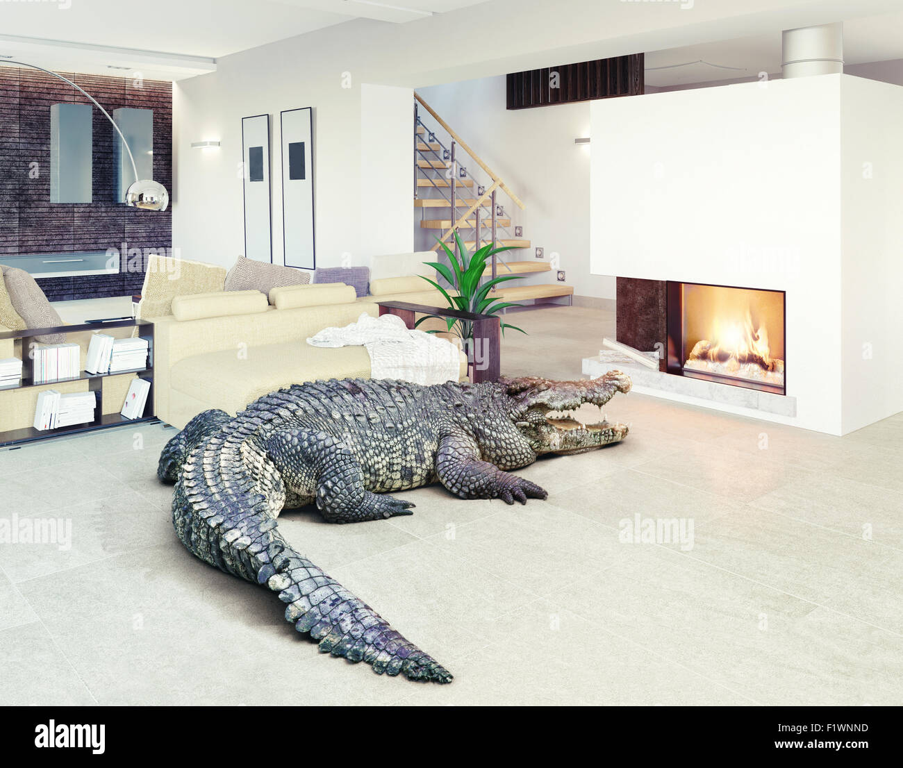 Big crocodile relax in the luxury interior (photo and cg elements combination) - Stock Image