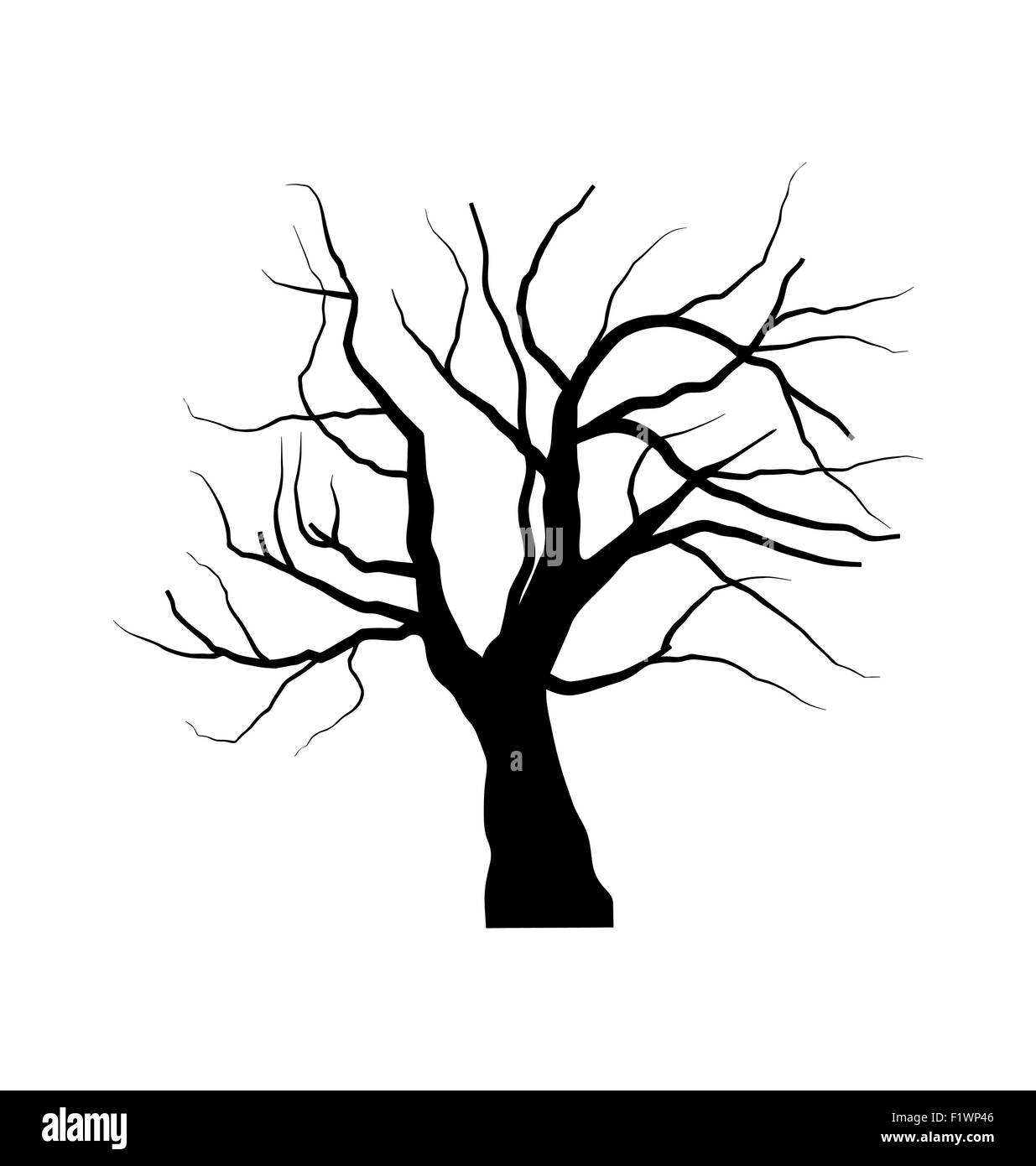Sketch Of Dead Tree Without Leaves Isolated On White Backgroun Stock Vector Image Art Alamy Cartoon christmas tree with decorations isolated vector. alamy
