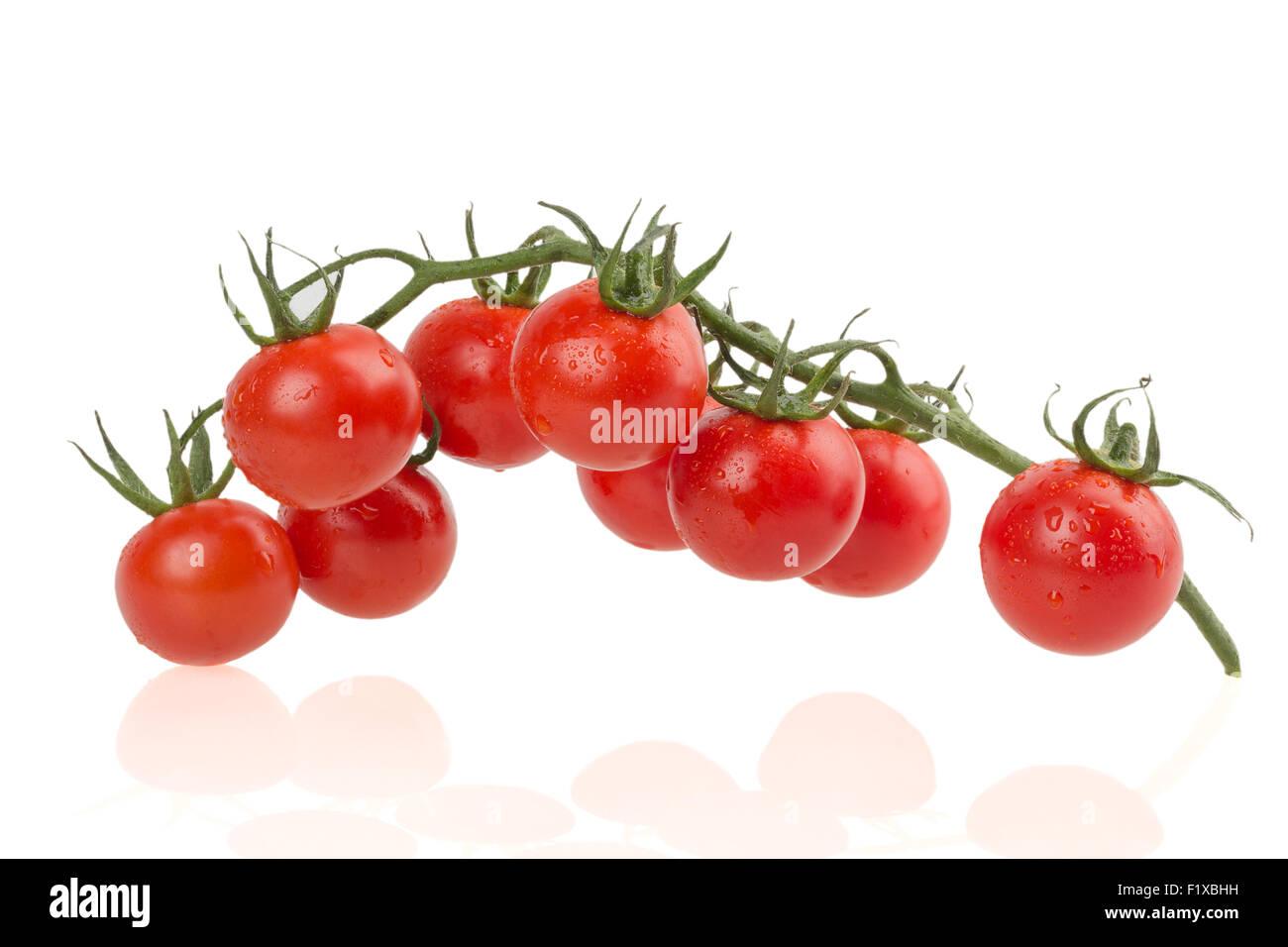 Ripe tomatoes on white background. - Stock Image