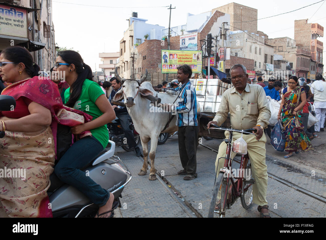 A man leads his bullock-drawn cart across crowded rail tracks in Bikaner - Stock Image