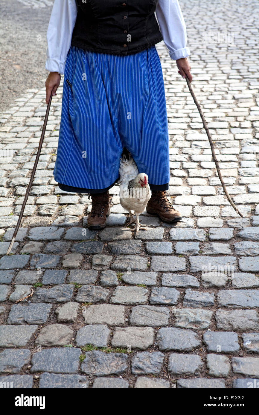 A chicken is led by a medieval-clad women with sticks on a paved path, Germany, - Stock Image