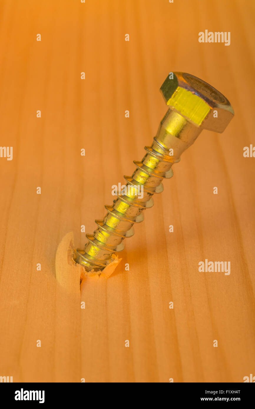 Concept of turn the screw, pressurize, pressure. Photo of steel screw embedded in pine wood. Stock Photo