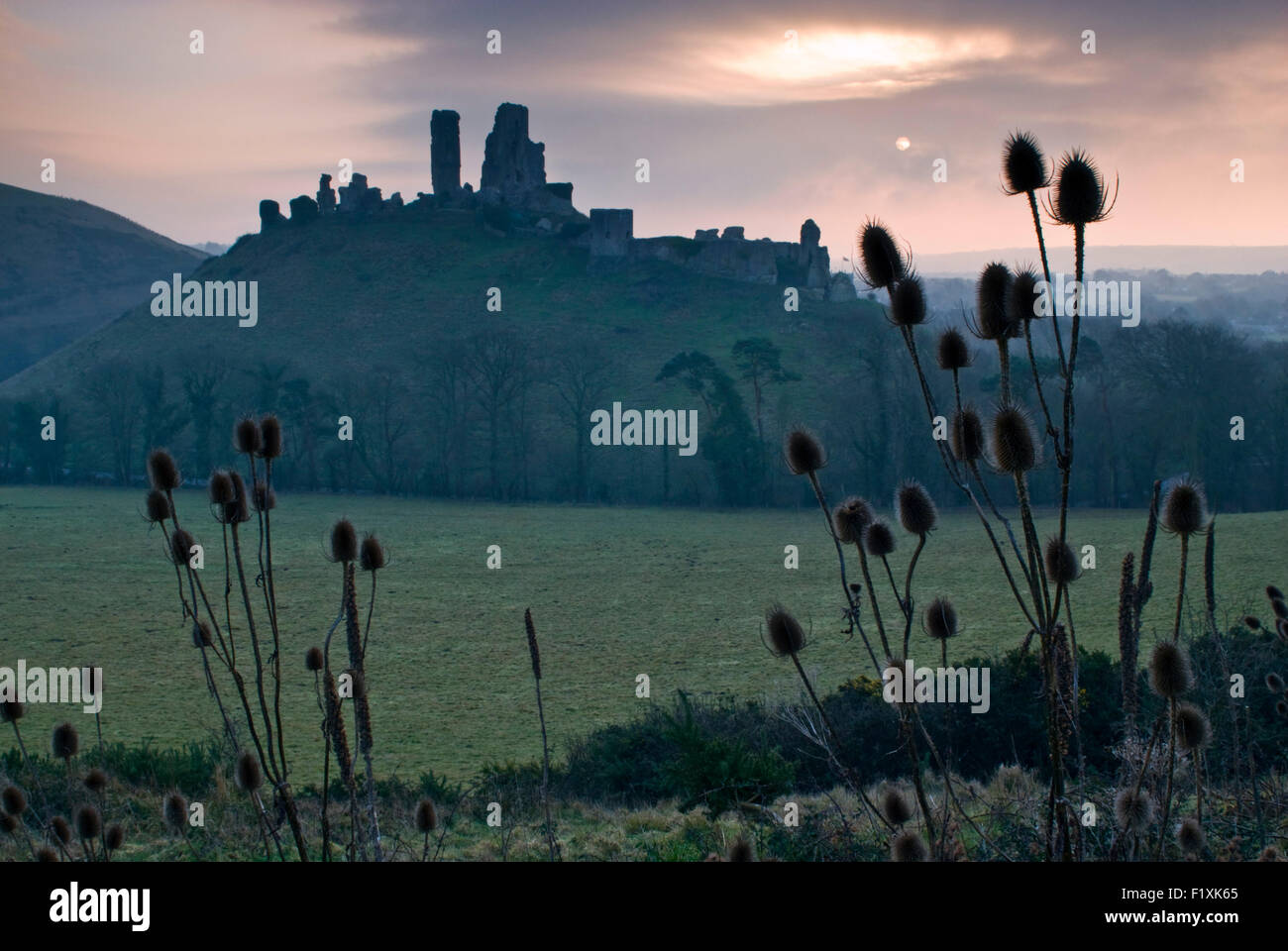 The ruins of Corfe Castle on the Isle of Purbeck in Dorset, England, UK - Stock Image