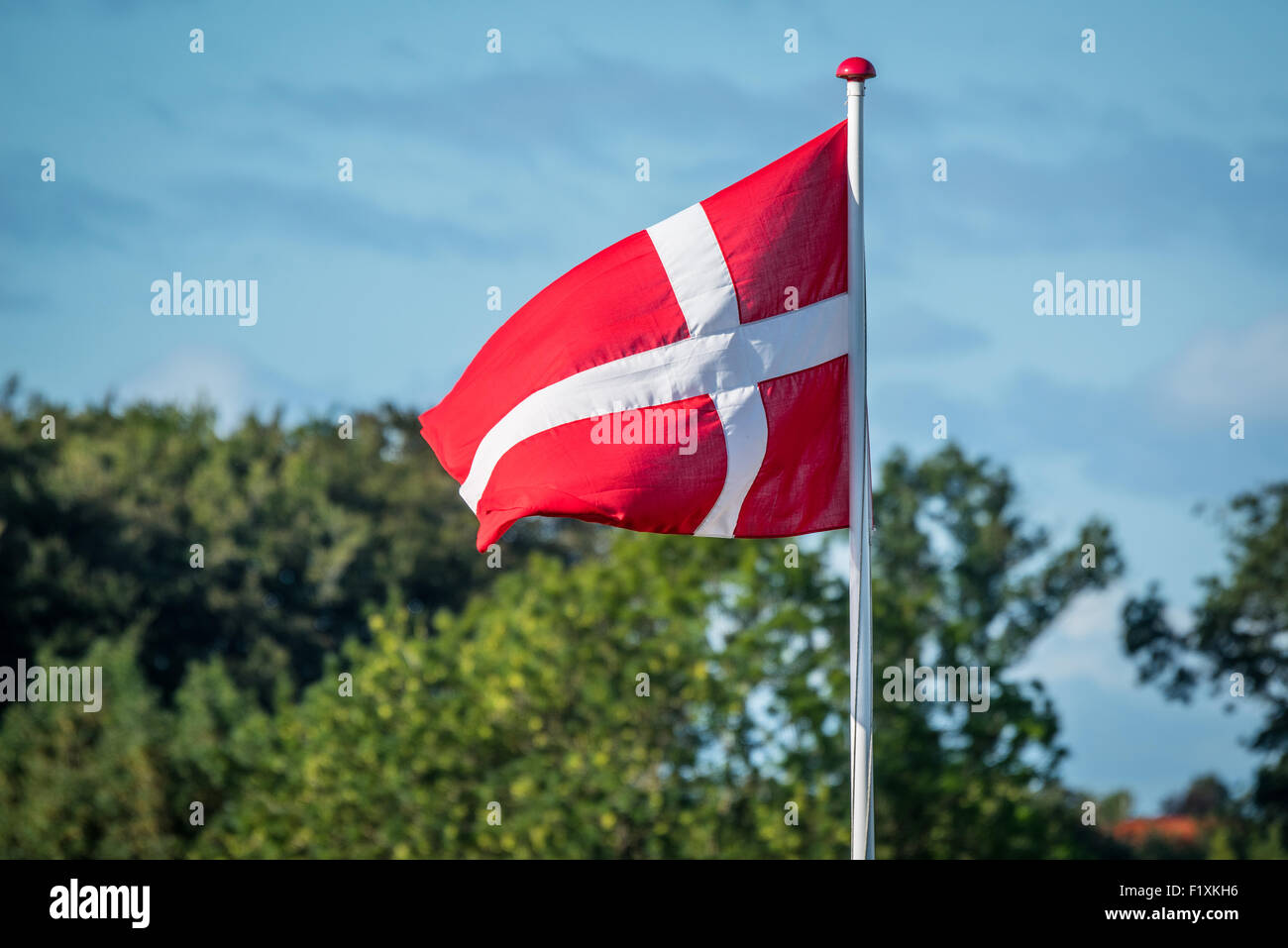 Flag of Denmark in the wind with trees in the background - Stock Image