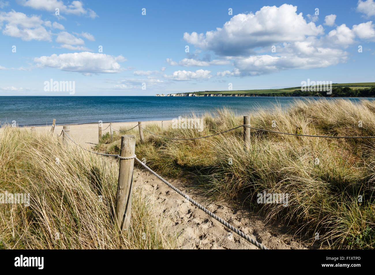 Studland Beach and view towards Old Harry Rocks, Isle of Purbeck, Dorset - Stock Image