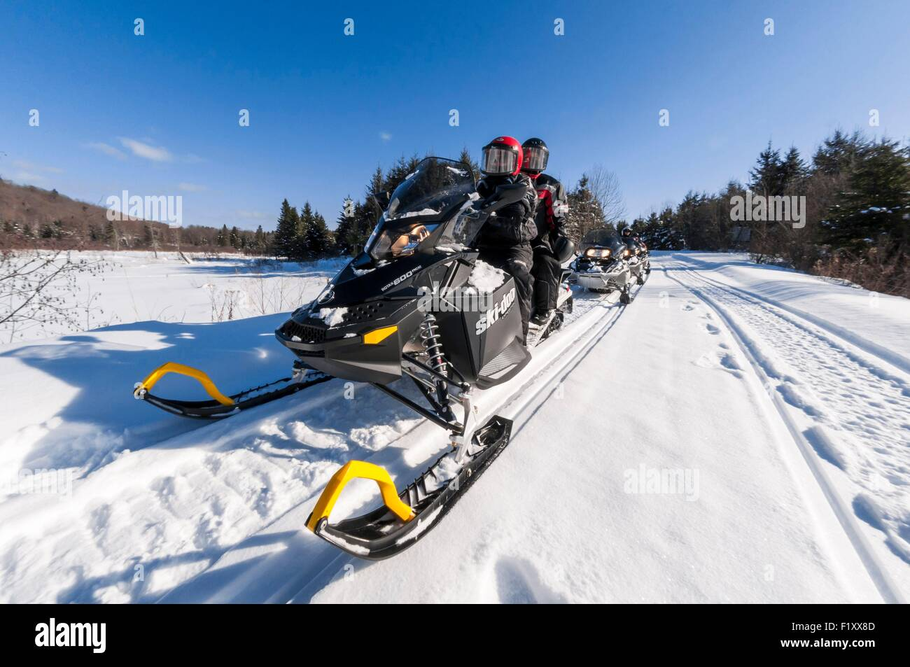 Canada, Quebec, Outaouais, snowmobile in Papineau Park and Kenauk Nature - Stock Image