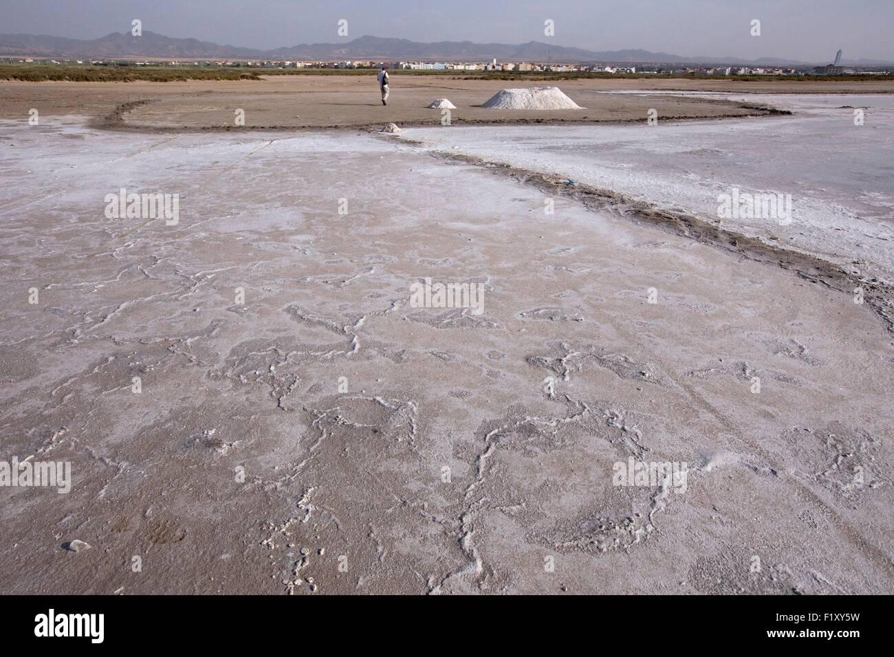 Morocco, Nador Lagoon, Saline - Stock Image