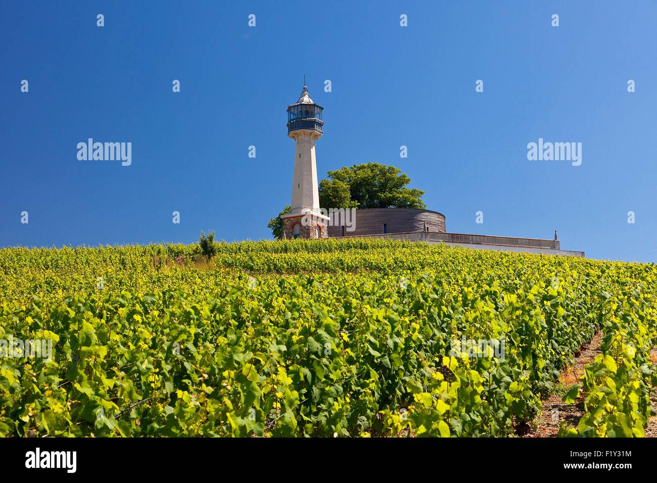 France, Marne, regional park of Montagne de Reims, Lighthouse of Verzenay - Stock Image