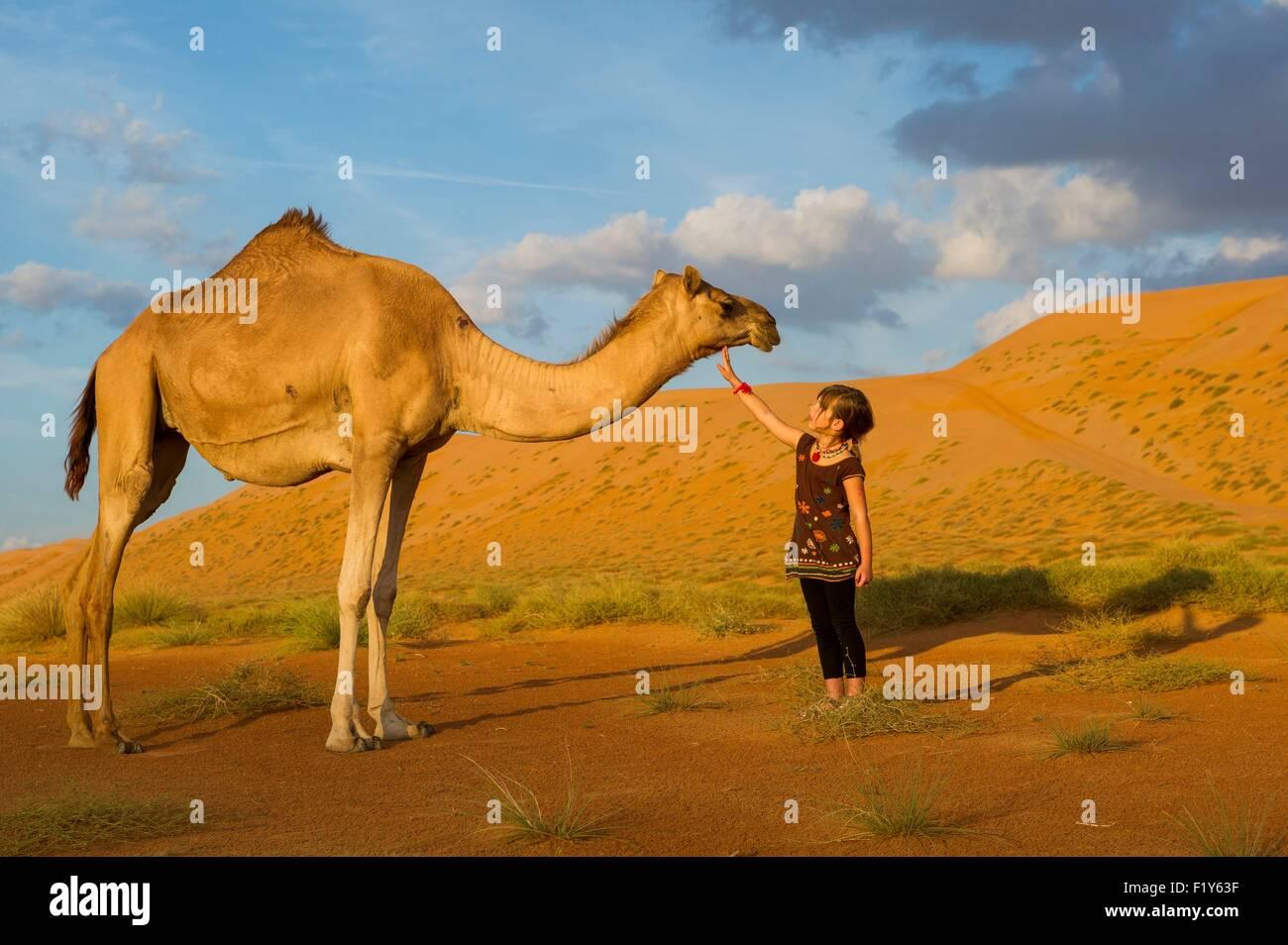 Oman, Sharquiyah Sands the Eastern Sands, Bidiyah, sunset in the dunes - Stock Image