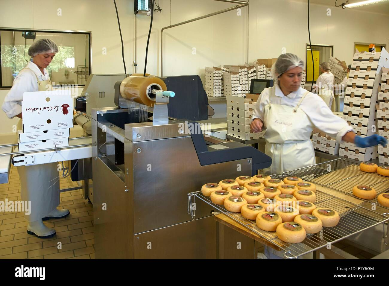 France, Loire Atlantique, Pornic, Cure Nantais cheese factory, cheese packaging - Stock Image