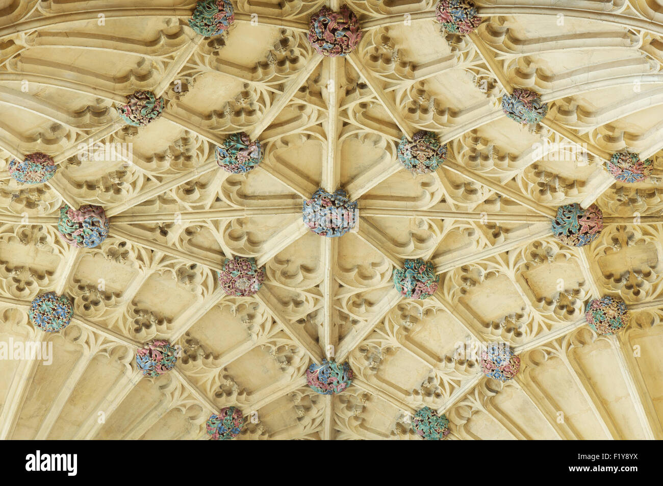 A detail of the colourful bosses of the ornate Gothic fan vaulted ceiling above the organ loft, Sherborne Abbey, - Stock Image
