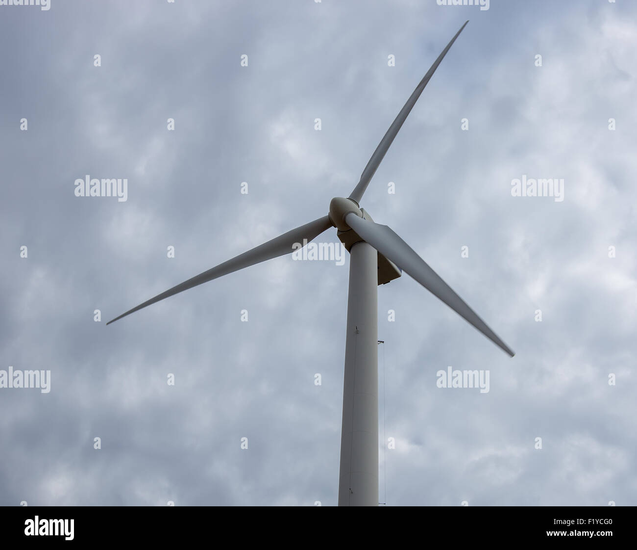 Windmills on display at the American Wind Power Center and Museum in Lubbock, Texas. - Stock Image