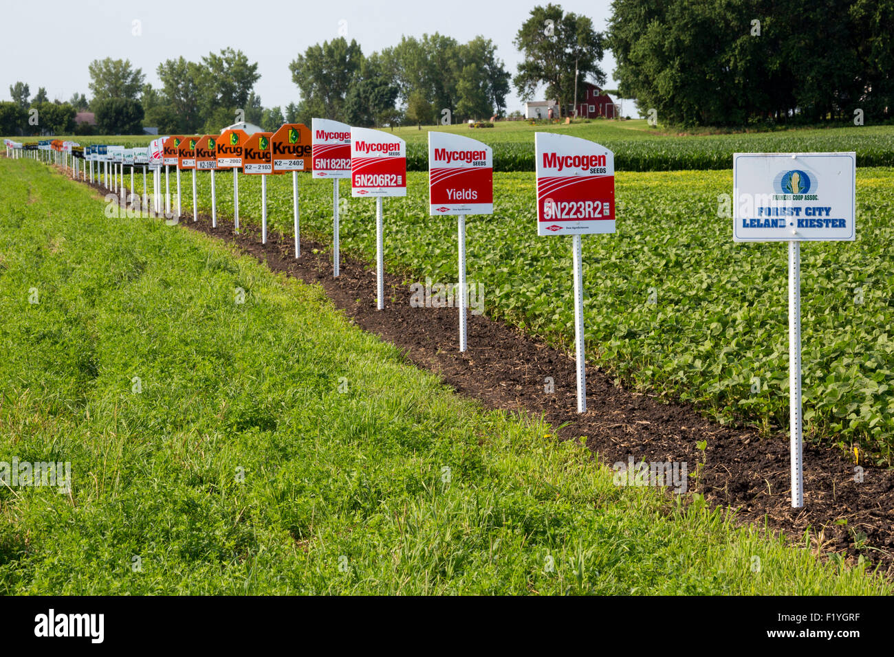 Forest City, Iowa - Signs mark different crop varieties in a soybean field, including crops genetically modified. - Stock Image
