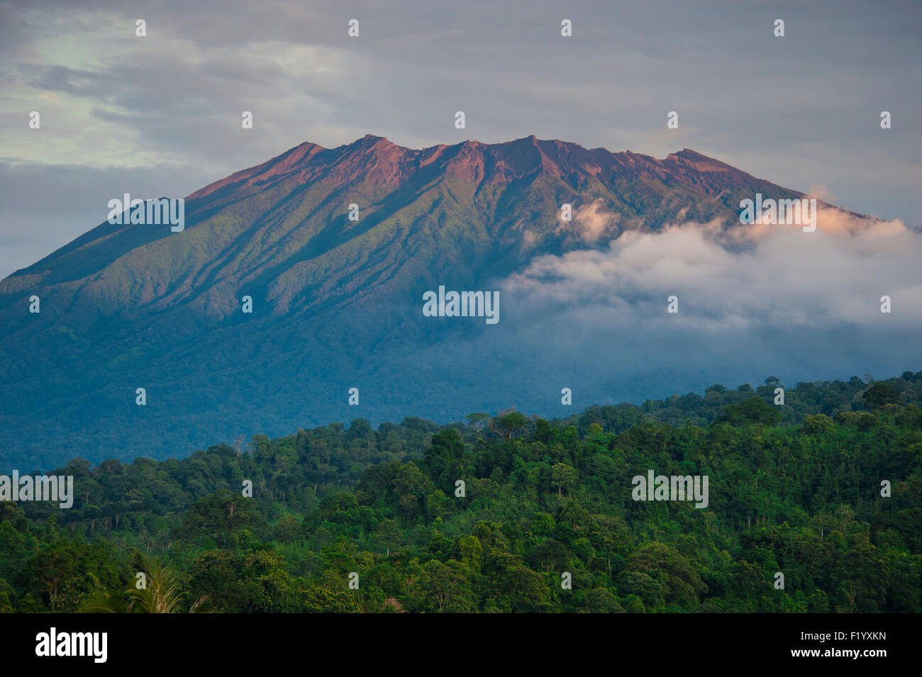 Ijen Volcano - Stock Image