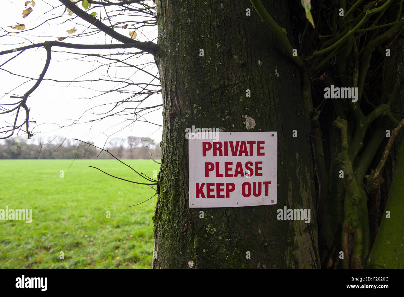 'Private Please Keep Out' sign in red on white nailed to a tree beside a grassy field. Dorset, England. - Stock Image