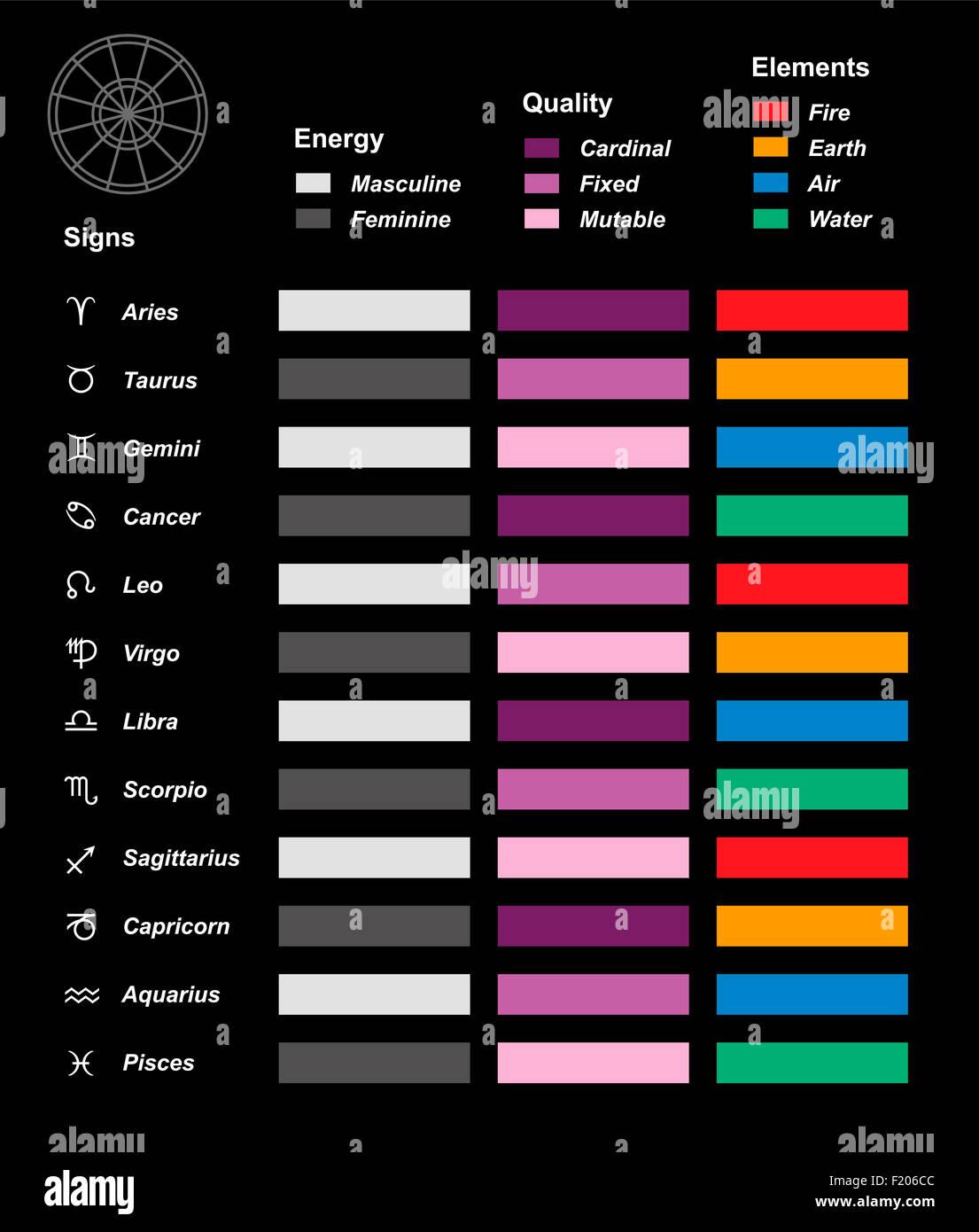 Zodiac pie chart
