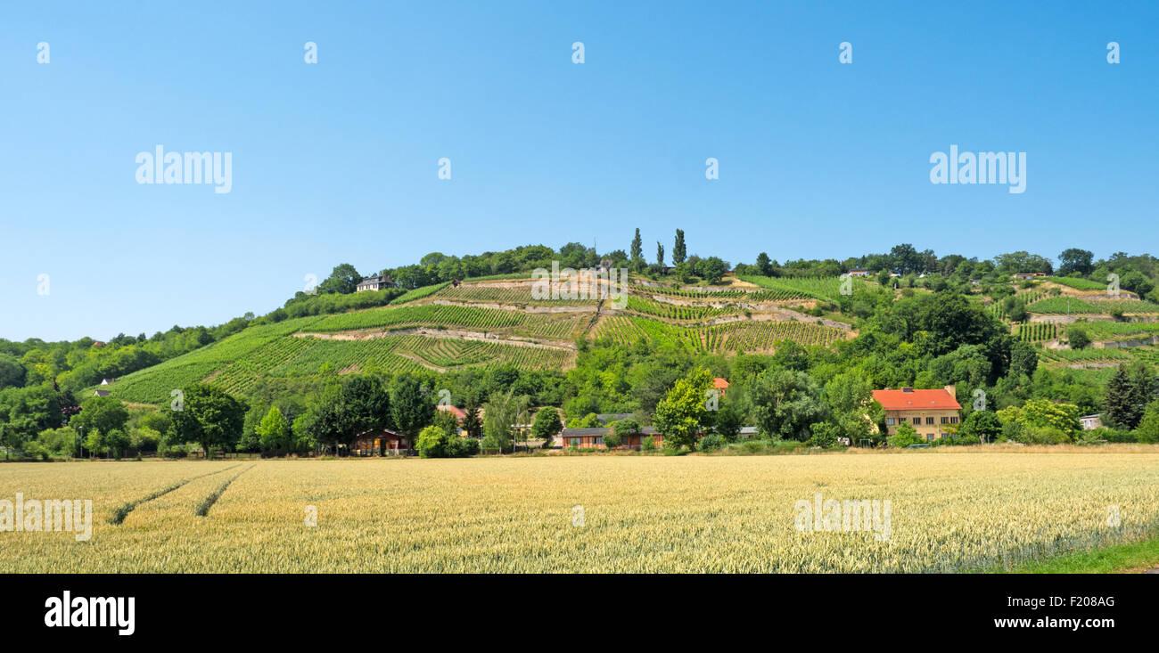 Landschaft in Sachsen-Anhalt Stock Photo