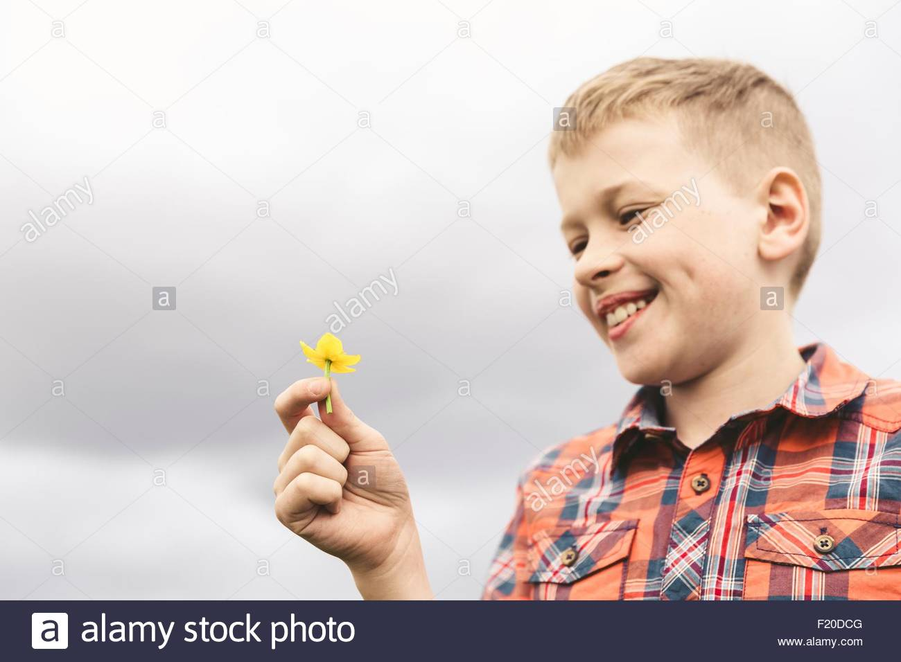 Portrait of boy holding yellow wildflower against overcast sky - Stock Image