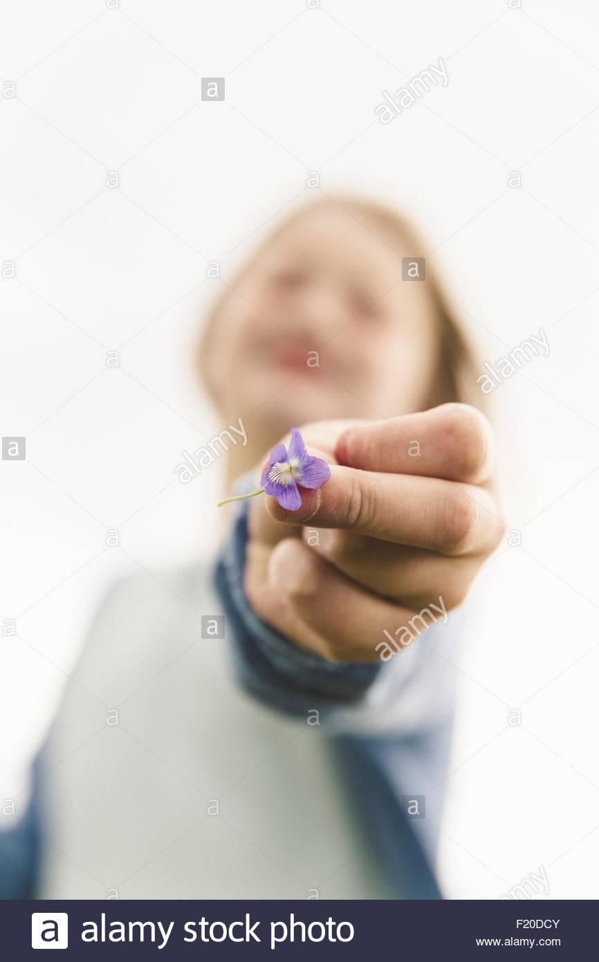 Close up of girls hand holding purple wildflower against overcast sky - Stock Image
