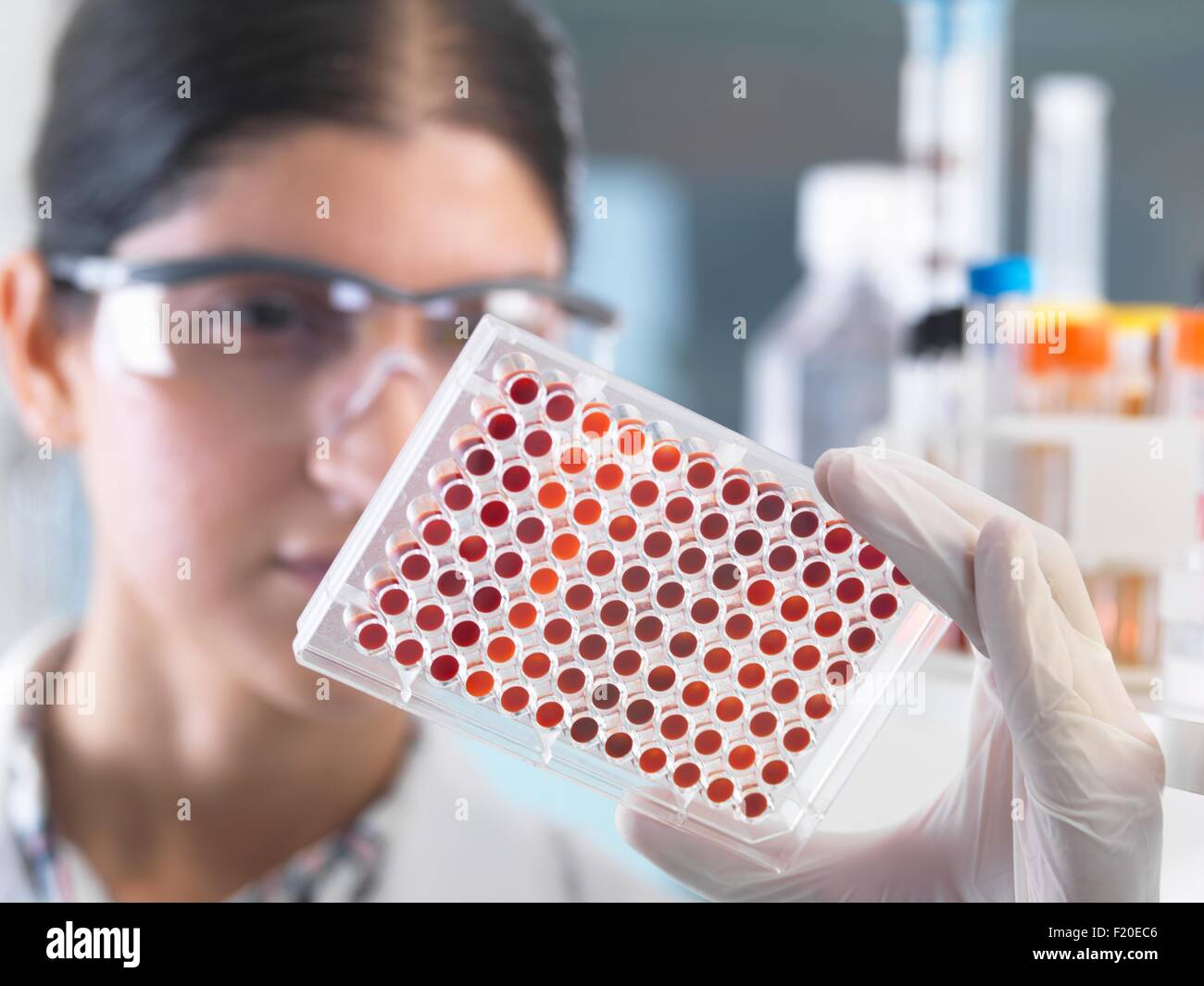 Close up of female scientist examining micro plate blood samples in laboratory Stock Photo