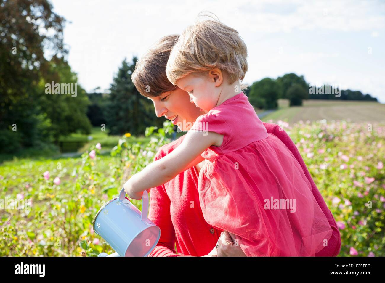 Mid adult mother and toddler daughter watering flowers in flower field - Stock Image