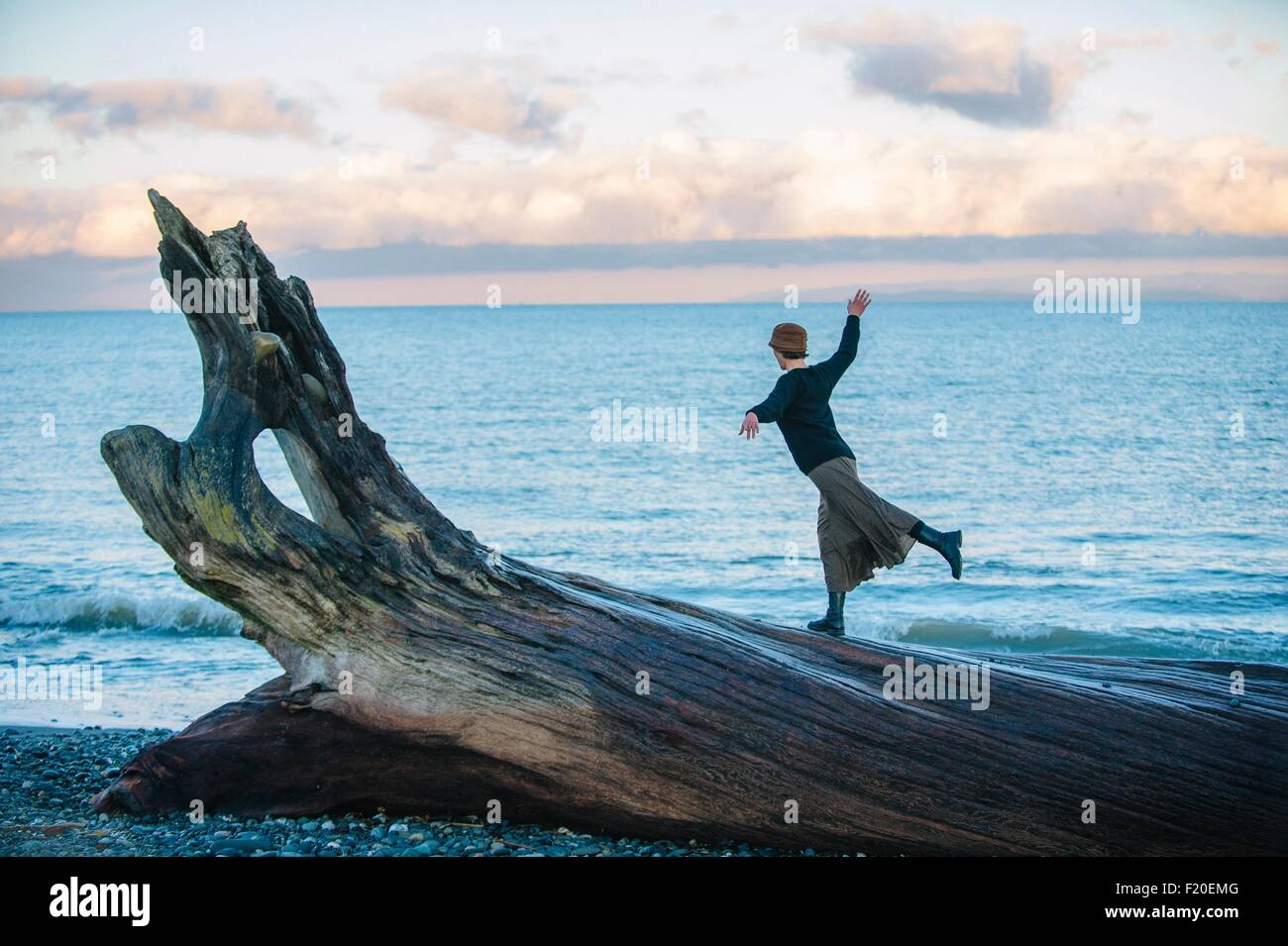 Woman standing on large driftwood tree trunk on beach - Stock Image