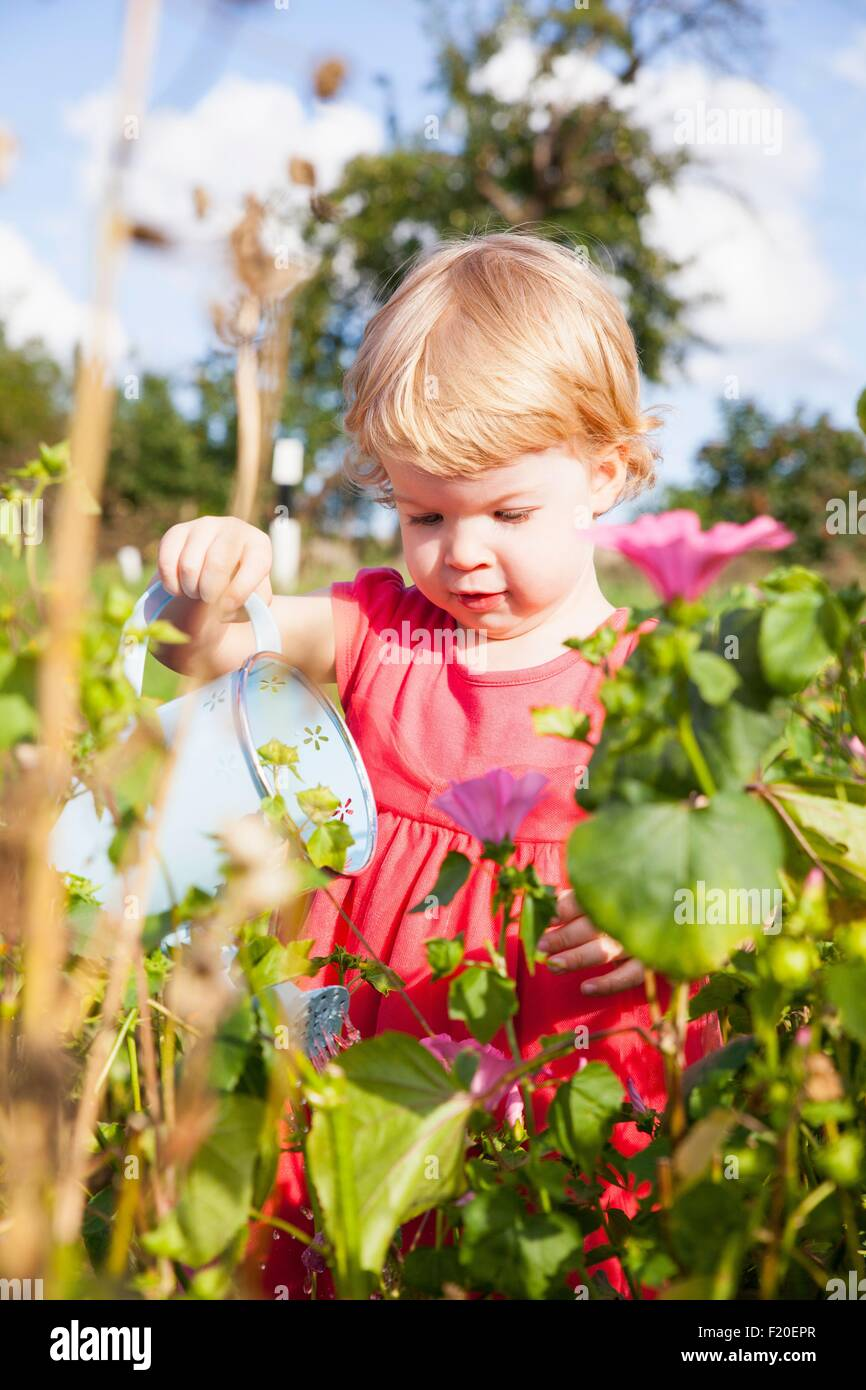 Female toddler watering flowers in flower field - Stock Image