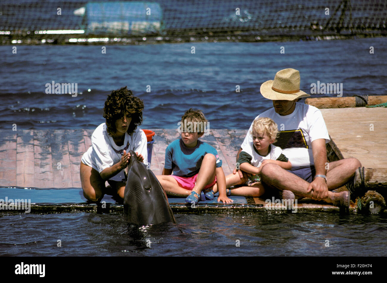 Dolphin trainer communicates with Bottlenose Dolphin (Tursiops truncatus): two autistic children and man observe - Stock Image