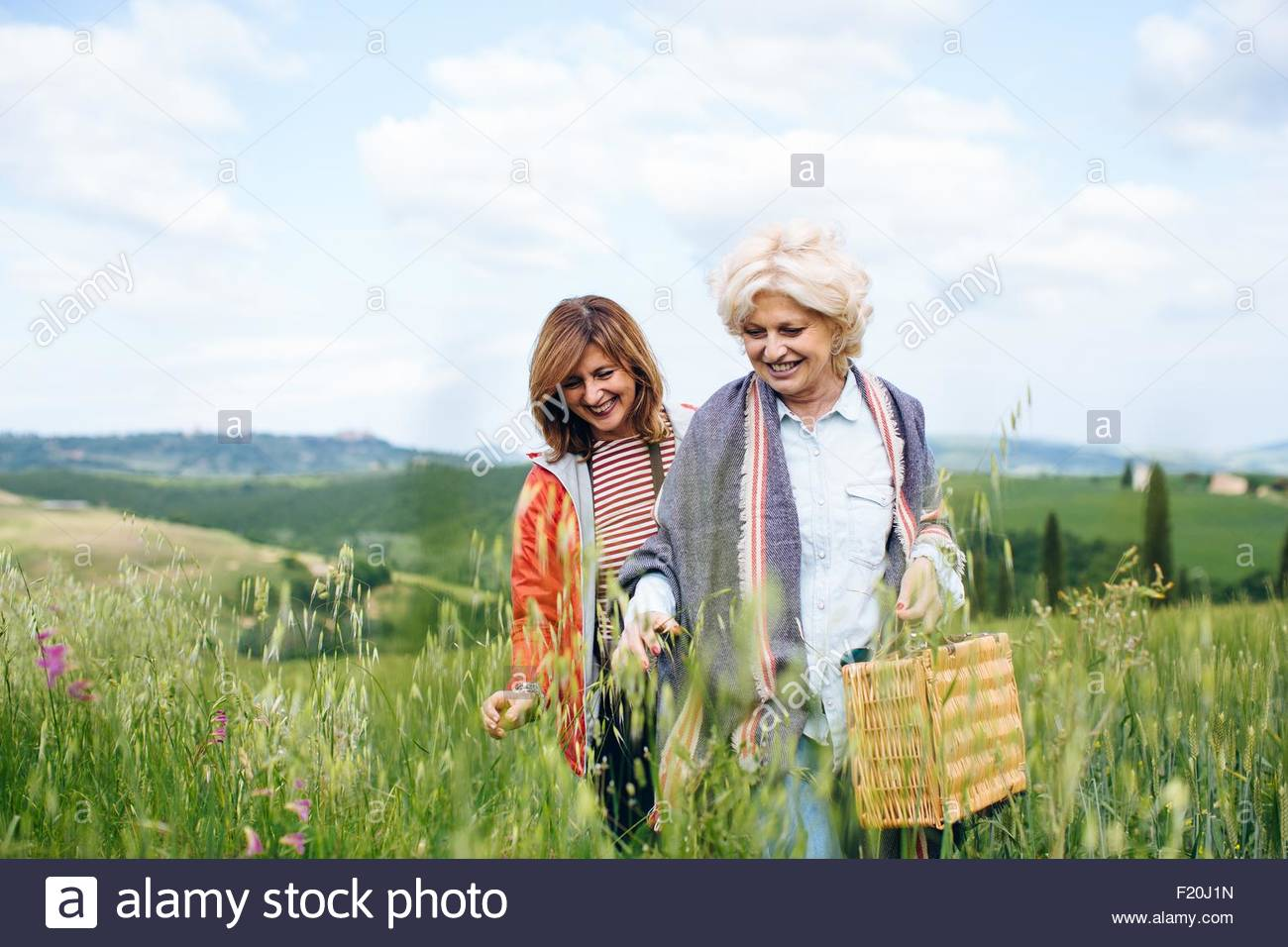 Two mature women carrying picnic basket in wheatfield, Tuscany, Italy - Stock Image